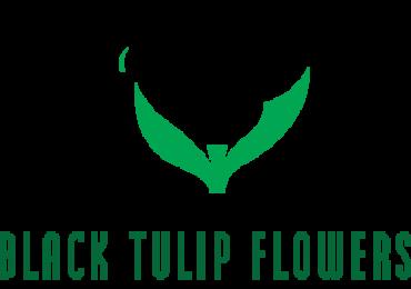 Best Online Flower Shop in Doha Qatar-Black Tulip Flowers
